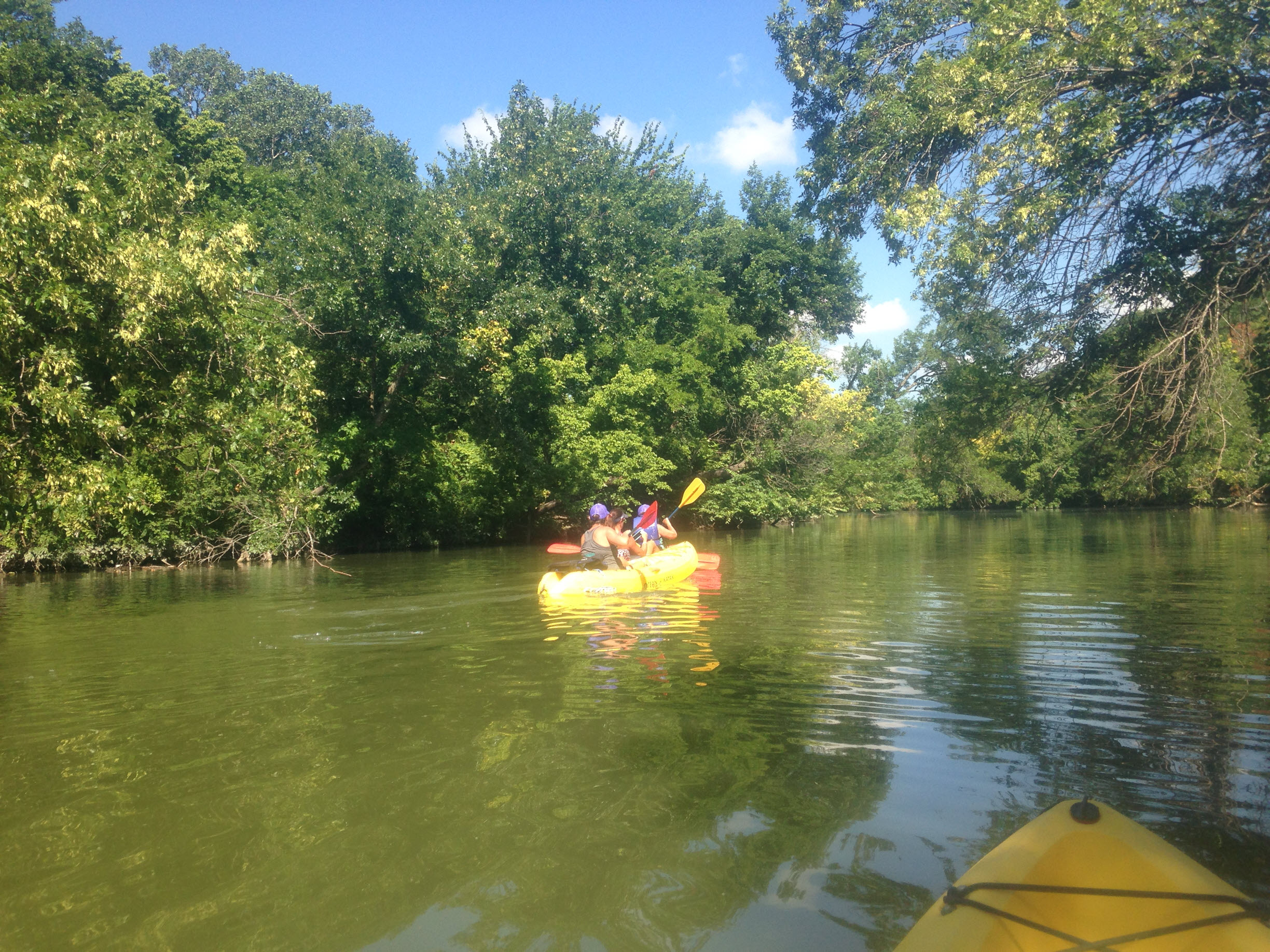 Kayak Dallas
